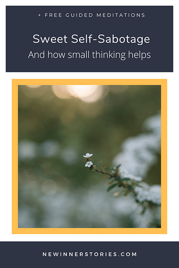 Pinterest image with blogs title